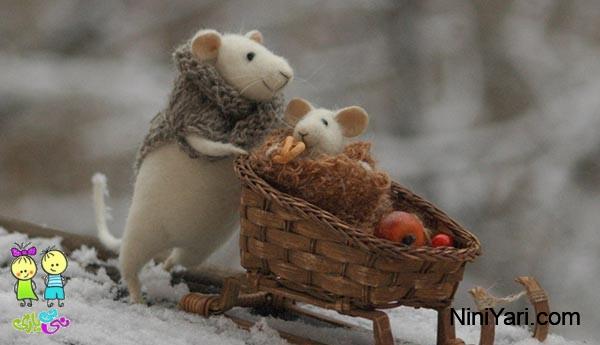 قصه موش کوچولو ، موش کوچولو، قصه کودکانه، قصه خردسال